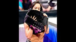 AJ Lee loves her Divas 标题