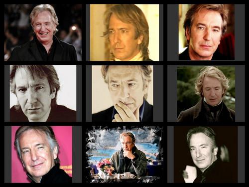 Severus Snape wallpaper titled Alan
