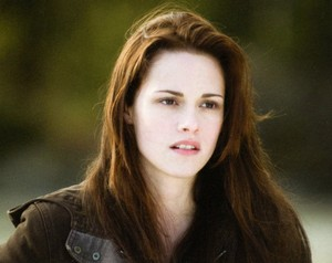 Bella angsa, swan in New Moon