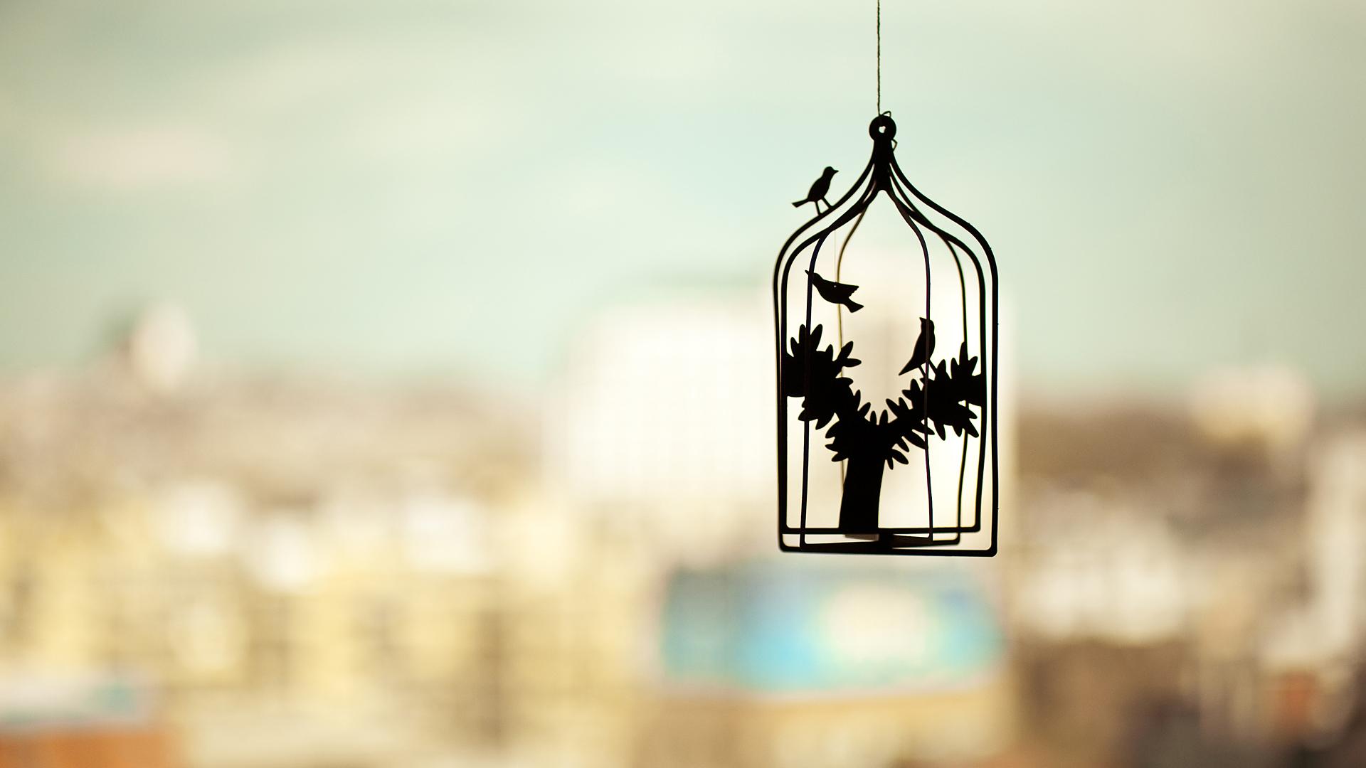 Bird Cage দেওয়ালপত্র