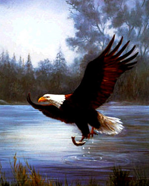 eagle with a 물고기 painting