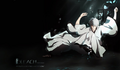 *Hichigo Shirosaki* - bleach-anime photo