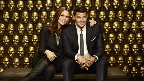 Bones wallpaper with a business suit called Bones