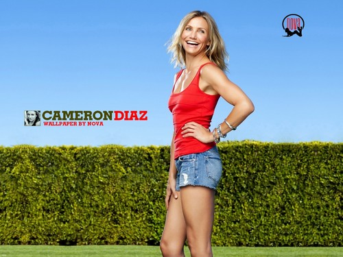 cameron diaz wallpaper possibly with bare legs, hot pants, celana panas, and a pakaian bermain, playsuit called Cameron Diaz