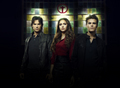 Electric - the-vampire-diaries-tv-show photo
