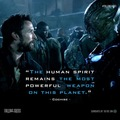 Falling Skies Quotes