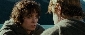 LOTR: Fellowship of the Ring
