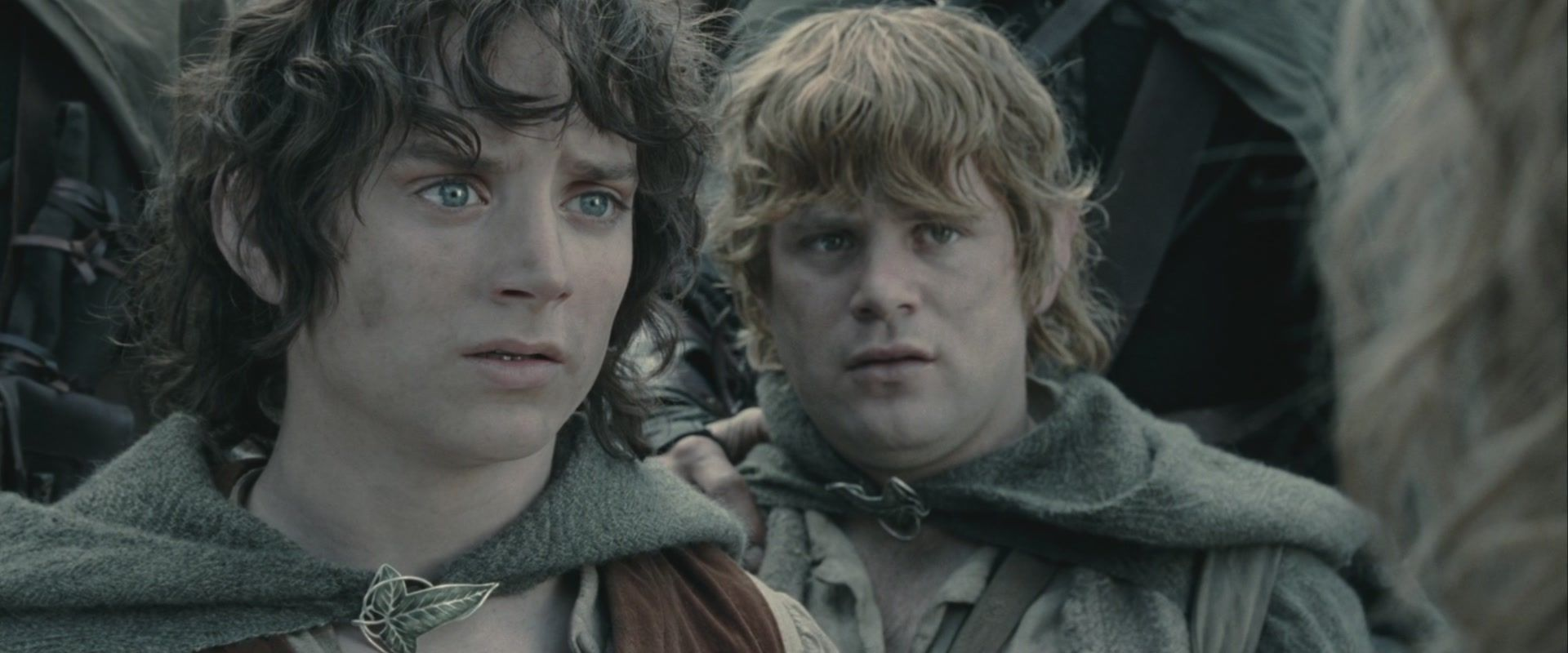 The Lord Of The Rings Sam And Frodo