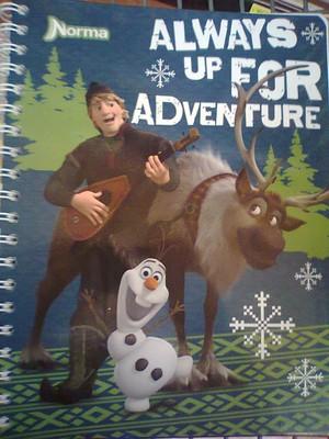 फ्रोज़न Notebooks