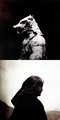 Sandor Clegane - game-of-thrones fan art