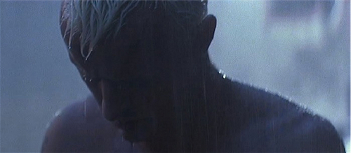 Blade Runner wallpaper containing a fountain entitled Hauer