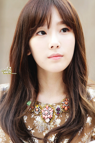 Girls Generation/SNSD wallpaper with a portrait entitled Lotte Fansign-Taeyeon