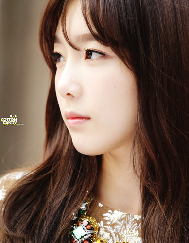 taeyeon (snsd) wallpaper with a portrait entitled Lotte Fansign-Taeyeon