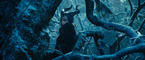 Maleficent achtergrond with a fontein entitled Maleficent