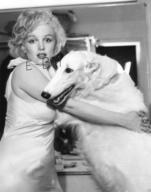 Marilyn With Canine Companion