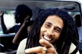 Marley - bob-marley photo