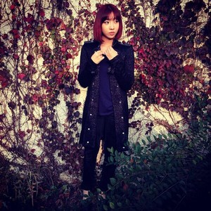 "Minzy's Instagram Update: ""A lady who knows how to adjust her clothes to autumn^^"" (131020)"
