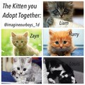 the kitten you adopt together - niall-horan fan art