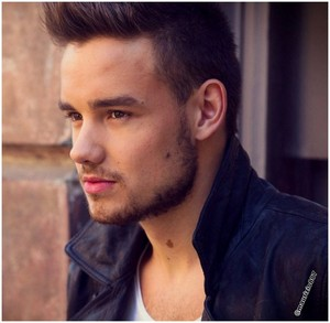 liam payne Midnight Memories 2013