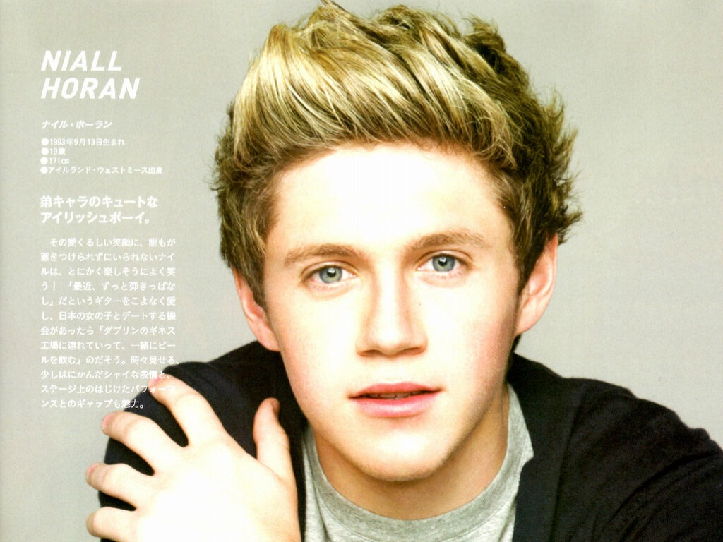 One Direction images Niall Horan ♡ HD wallpaper and ...