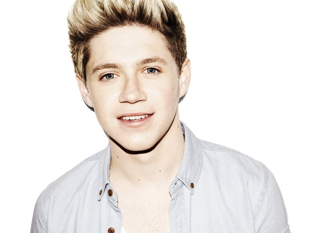 One Direction Fond Decran Possibly With A Portrait Called Niall Horan
