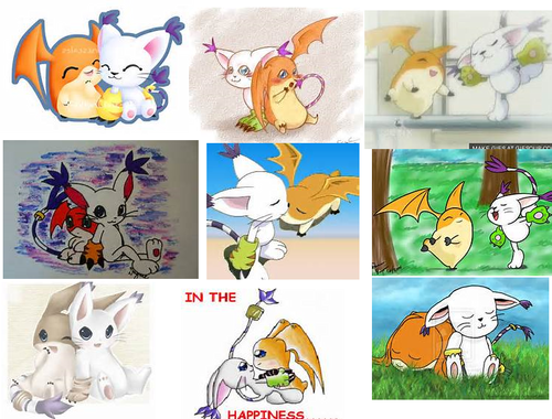 Gatomon And Patamon Digimon couples...