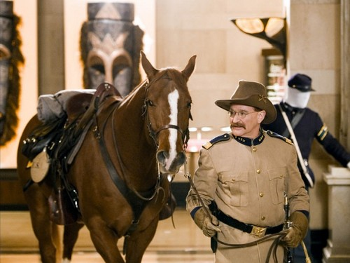 robin williams wallpaper with a horse trail, a horse wrangler, and a dressage called Night At The Museum