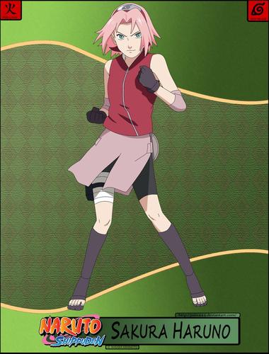 Haruno Sakura wallpaper containing a wicket titled Sakura wallpaper