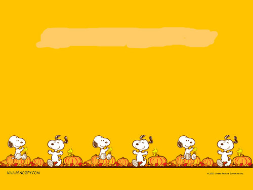 Peanuts wallpaper entitled Snoopy Thanksgiving