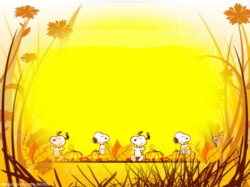 Peanuts Wallpaper Possibly Containing A Bouquet Japanese Apricot And Parasol Called Snoopy Thanksgiving