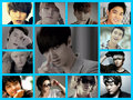 Super Junior Members color - super-junior fan art
