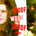 "SPN ""Dean Dog Afternoon"" - supernatural icon"