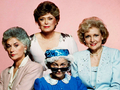 The Golden Girls - the-golden-girls wallpaper