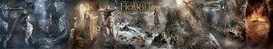 The Hobbit: The Desolation of Smaug NEW Banner