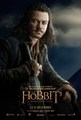The Hobbit: The Desolation of Smaug French Poster - Bard