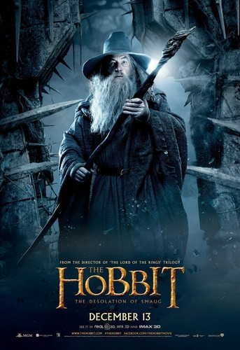 द हॉबिट वॉलपेपर probably with a sign called The Hobbit: The Desolation of Smaug International Poster - Gandalf the Grey