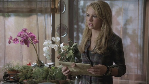"The Secret kreis (TV Show) Hintergrund probably with a bouquet and a window box called TSC ""Beneath"" Auszeichnungen"