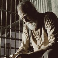 Hershel Greene ✮