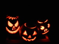 Three pumpkins for 2013 - halloween photo