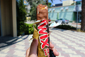 Twix - chocolate photo