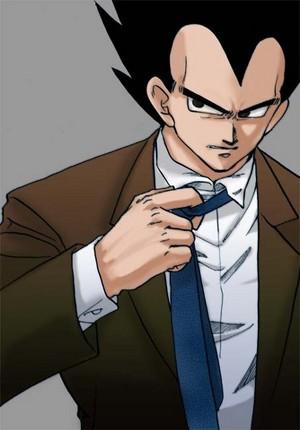 Vegeta's suit