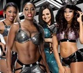 Cameron,Naomi,Aksana,Alicia Fox - wwe-divas photo