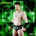 Sheamus Baby - wwe photo