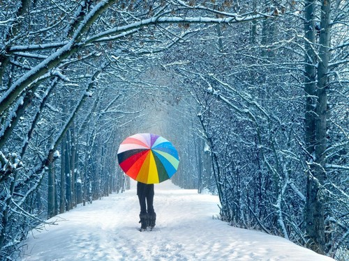 Winter wallpaper with a parasol entitled Winter Wallpaper