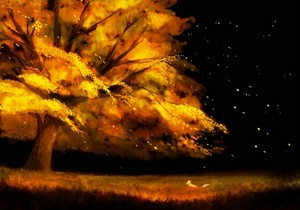 autumn night