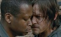 Daryl. - the-walking-dead photo
