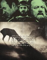 Baratheon Brothers - game-of-thrones fan art