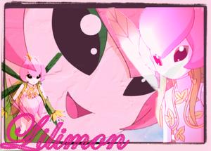 lillymon wallpaper