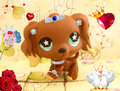 love is in the air - littlest-pet-shop fan art