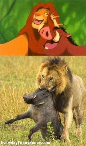 simba and pumbaa